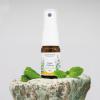 Przeciwbólowy olejek miętowy zbija gorączkę, na przeziębienia, grypę, infekcje wirusowe i bakteryjne, ból menstruacyjny, niestrawność